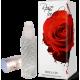 Parfum fara alcool Rose Touch